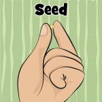 The Parable of the Mustard Seed. Free printable preschool Bible lesson. Includes games, activities, coloring pages, Bible crafts and more.