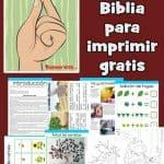 La parábola de la semilla de mostaza. Lección de la Biblia imprimible gratis para niños. Incluye juegos, actividades, páginas para colorear, manualidades bíblicas y más.
